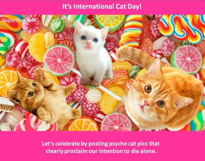international cat day candy