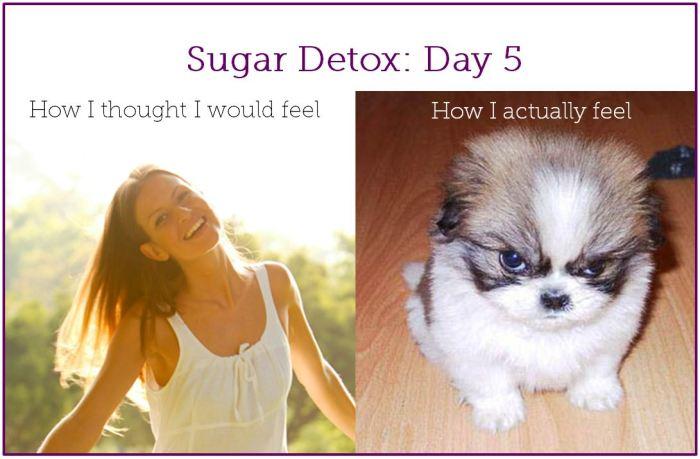 sugar detox day 5